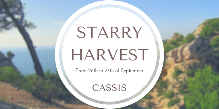 The STARRY HARVEST (1)