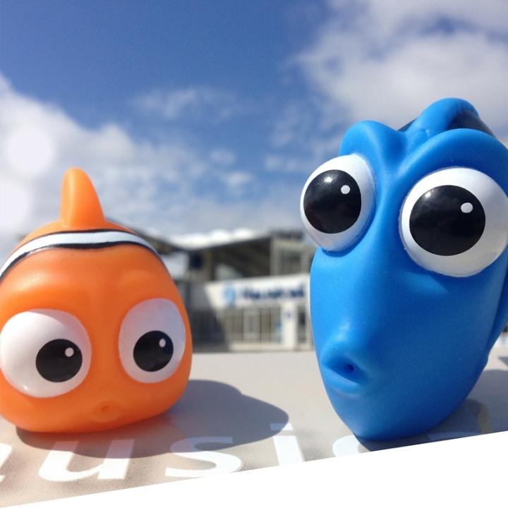 Nemo & Dory